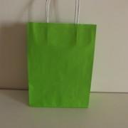 sacos papel liso verde